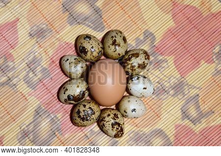 A Chicken Egg Lies Surrounded By Small Quail Eggs.