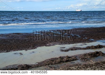 A Sandy Beach In Malmö In Sweden With The Rotten Smelly Seaweeds On It With A Dirty Soiled Water