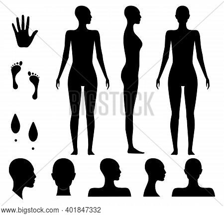 Human Body Silhouette Of A Bald Naked Barefoot Adult Woman. Anonymous Female Head Avatar. Palm Hand,