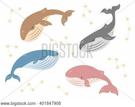 Vector Kids Dreamy Illustration. Whales Set With Stars And Constellations In Tender Colors. Baby Ani