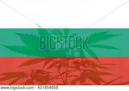 Cannabis Legalization In The Bulgaria. Weed Decriminalization In Bulgaria. Medical Cannabis In The B