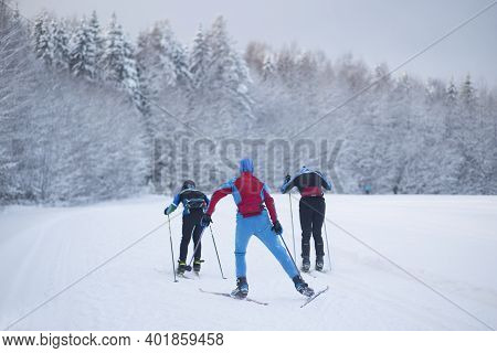 Cross Country Ski. Skiing In Winter On The Track.