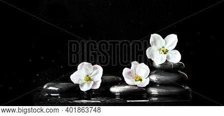 Spa Stones And Pink Flowers On Black Background With Water. Spa Concept.