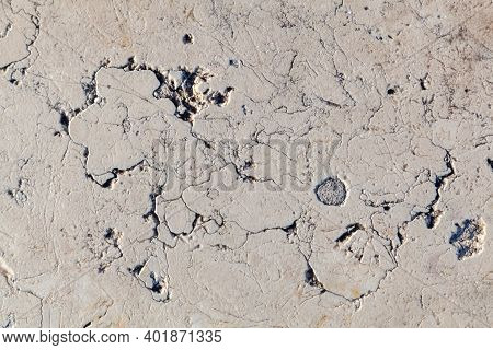 Background Texture Of A Marble Surface