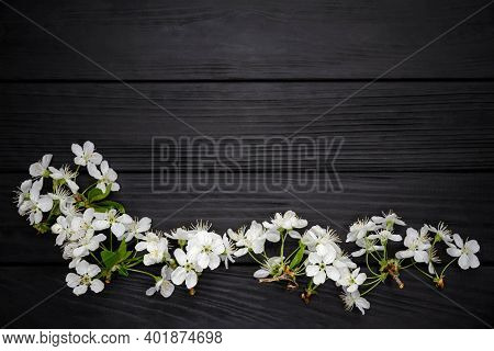 Simple Composition For Holiday At Wooden Board With Spring Flowers. Stylish Easter Rustic Flat Lay.