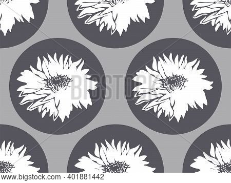 Geometric Seamless Pattern With Chrysanthemum On Grey Rounded Forms. Closeup White Silhouettes Flowe