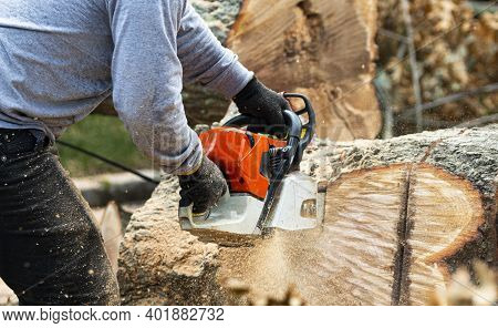 Close Up Of A Landscaper Slicing Up Up Large Tree Stump With A Chainsaw And Saw Dust Flying All Over