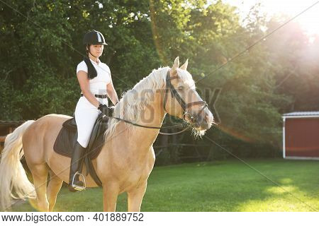 Young Woman In Equestrian Suit Riding Horse Outdoors On Sunny Day. Beautiful Pet