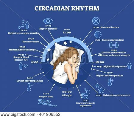 Circadian Rhythm As Educational Natural Cycle For Healthy Sleep And Routine