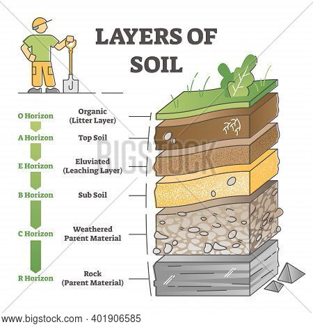 Layers Of Soil Diagram As Educational Labeled Earth Structure Outline Concept