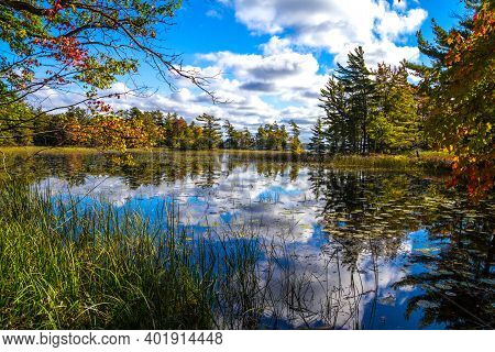 Autumn Wetlands Landscape. Fall Colors Reflect In A Small Pond Surrounded By Wetlands.
