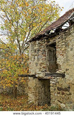 Detail Of A Ruinous House
