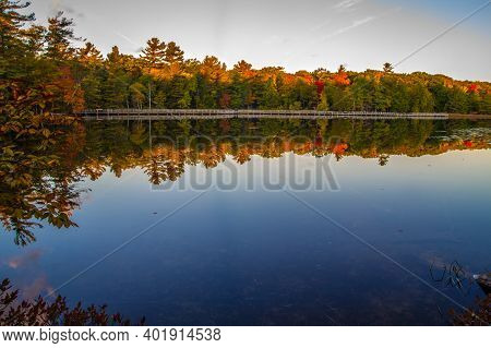 Fall Colors Reflected In The Waters Of Lost Lake Along Boardwalk Hiking Trail In Ludington State Par
