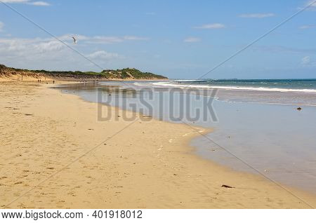 This Beautiful Stretch Of Beach Was Named After Andrew White, An English Settler - Torquay, Victoria