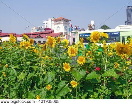 Ho Chi Minh City, Vietnam - February 10, 2011: The Aquapark Dam Sen