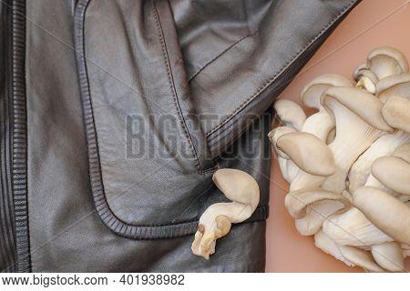 Jacket Made Of Mycelium Leather, Bio Based Sustainable Alternative To Leather Made Of Mushroom Spore