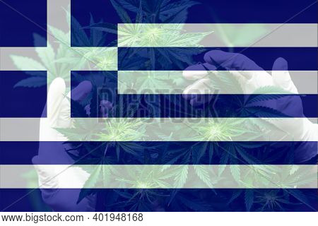 Cannabis Legalization In The Greece. Weed Decriminalization In Greece. Leaf Of Cannabis Marijuana On