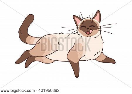 Funny Cartoon Cat. Adorable Home Animals, Brown Funny Cute Domestic Kitten Lying, Purebred Pet Washi