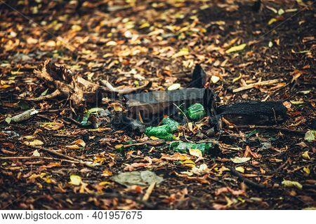 Broken Glass Bottle In Park. Shards Of Glass On Ground In Autumn Forest Among Fallen Leaves. Ecologi