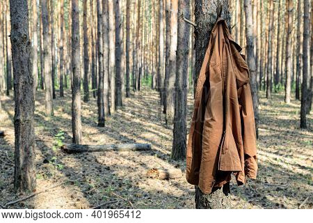 Brown Jacket Hung On A Tree Trunk In The Forest, No Owner. Threw Clothes