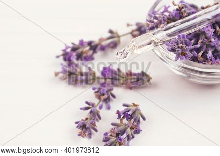Closeup View Of Dropper With Lavender Essential Oil And Lavender Flowers Around It On White Backgrou