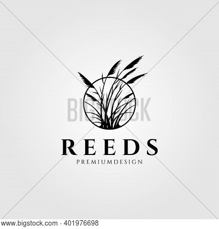 Reeds Logo Vector Aquatic Plant Illustration Design