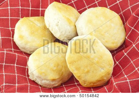 Fresh Baked Biscuits