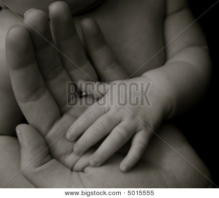 A Babys Hand In Her Mothers