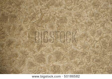 Lakebad Dry Background