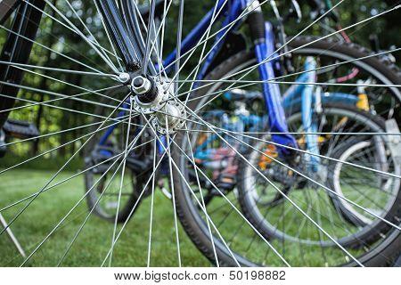 Bikes Seen Through Spokes