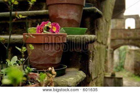 Tuscan Flower Pot