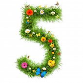 Fresh grass number 5 with blooms and butterflies. isolated on white background poster