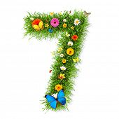 Fresh grass number 7 with blooms and butterflies. isolated on white background poster