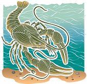 Animal Clam cancer in habitat water. Vector Illustration. poster