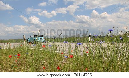beetle oldtimer on the way country roadside with red poppy and corn flowers poster