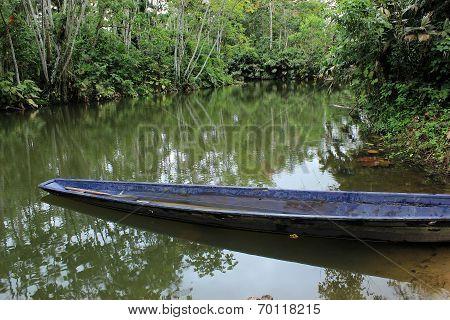 River Boat in the Jungle