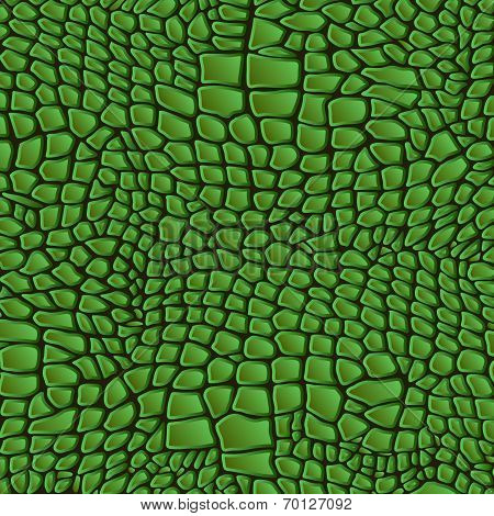 Leather animal snake textures reptile crocodile pattern background