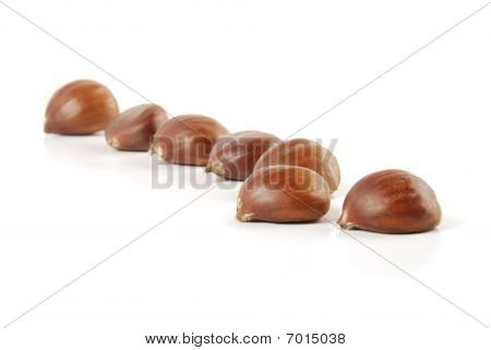 chestnut grains