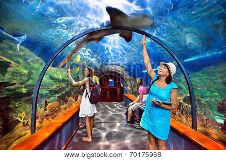 TENERIFE, SPAIN - JULY 15: Aquatic tunnel in the Loro parque aquarium on july 15, 2014 in Tenerife, Spain. This aquarium consists of twelve themed exhibits in a total of 1,200,000 litres of seawater.