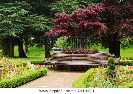 Vibrant Floral Garden With Round Bench