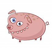 Really funny and crazy caricature pig character poster
