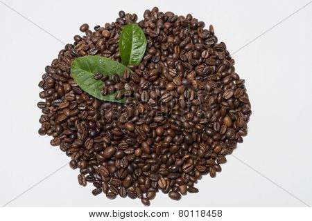 Roasted coffee, orange leaves on a white background.