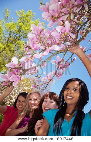 Magnolia Tree With Four Women
