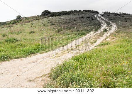 Dark Steep Path Countryside