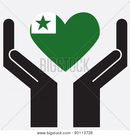 Hand showing Esperanto flag in a heart shape.