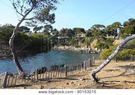 Sea And Coast In Bandol, France