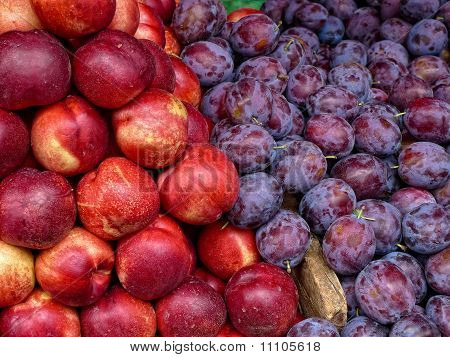 Plums And Nectarine Fruit