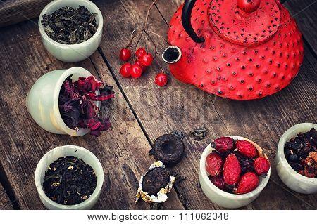 Leaves Of The Tea Bush