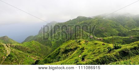 Homes, Farmland, And Cattle On The Mountaintop