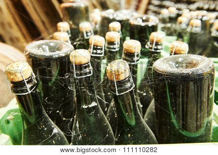 Wine production. Bottles with champagne with dust and net ageing in modern winery factory storehouse cellar. Shallow DOF.